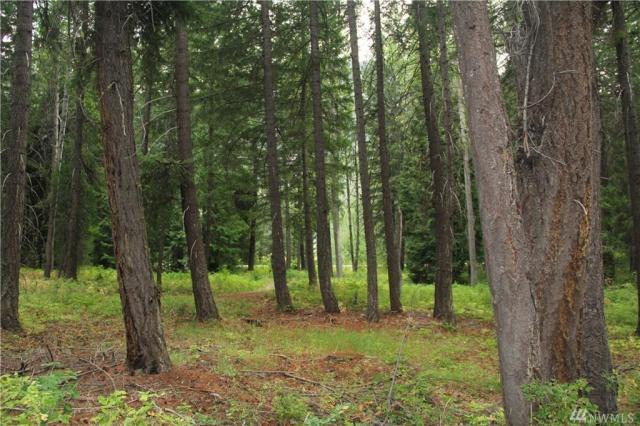 Property for sale at 548 Lost River Rd, Mazama,  WA 98833