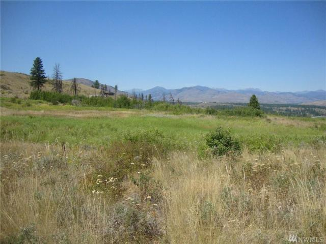 Property for sale at 0 Rising Eagle Rd, Winthrop,  WA 98862