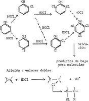 Fórmula de los trihalometanos