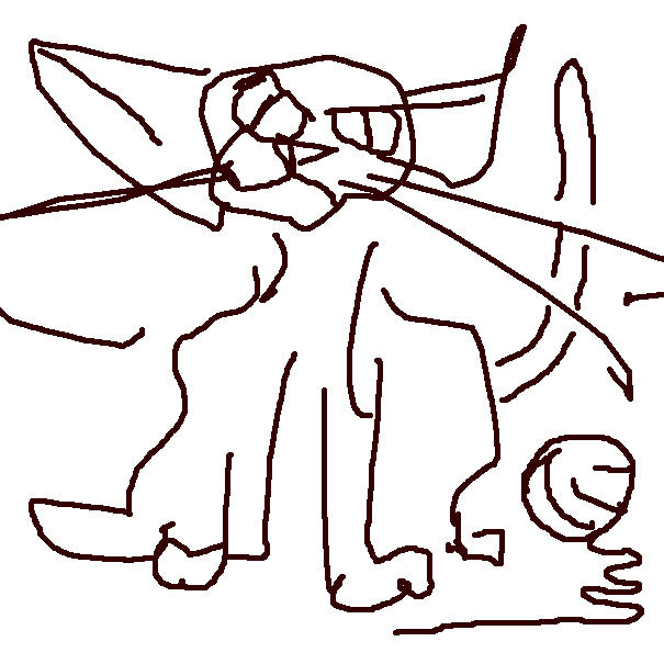 Drawing Animals Marshall Vandruff Romanek Words Worlds