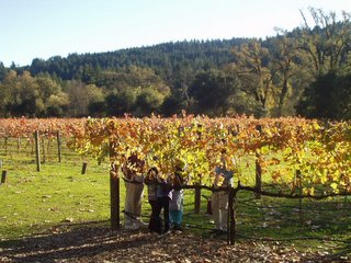 Group Photo in Grape Farms of Napa