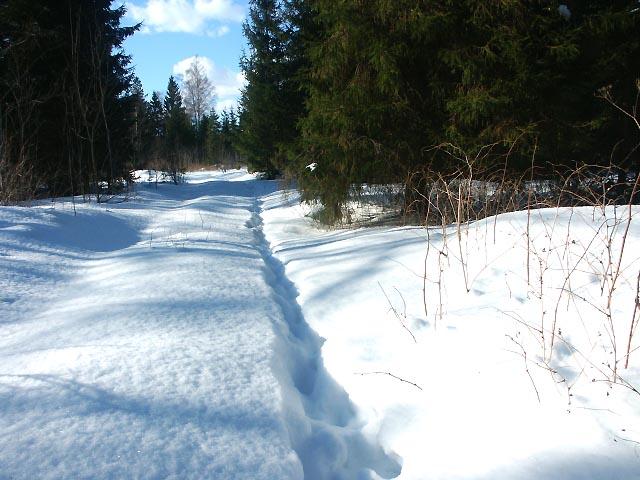 mets Kõrvemaal