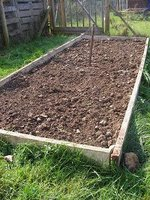Raised bed sown with grazing rye