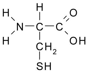 Image result for cysteine