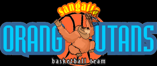 Senior Camp Basketball Logo