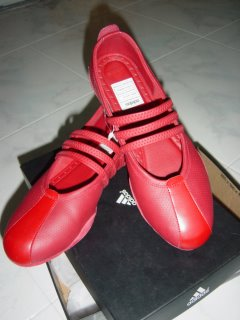 Pig Skin in Adidas Shoe??? (4/4)