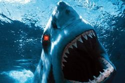 Image result for remote controlled sharks