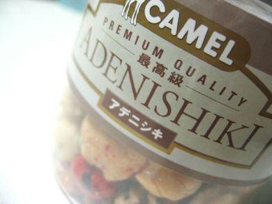Camel Adenishiki