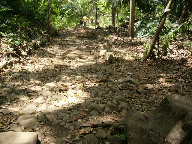 Un segmento despejado del antiguo empedrado del Camino de Cruces, restos localizados al pie de la Colina del antiguo Hospital de Clayton en la Ciudad de Panamá