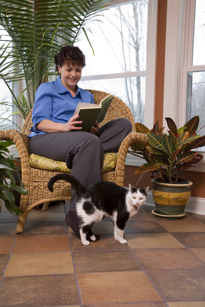 Image result for cats with women