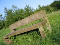 Local Bench