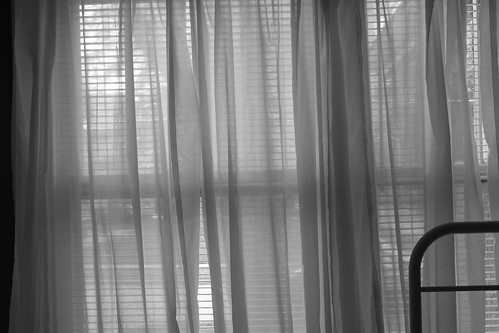 Window 4496