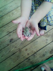 Girls aren't supposed to be into frogs!!