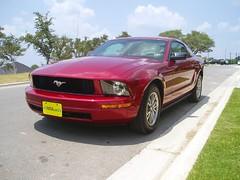 New Mustang 003