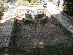 Backyard 02