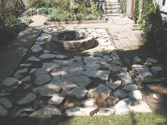 Backyard 05