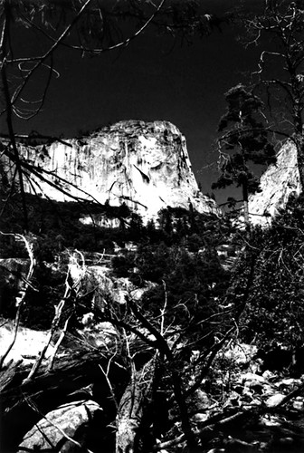 A View From Four-Mile-Trail, Yosemite