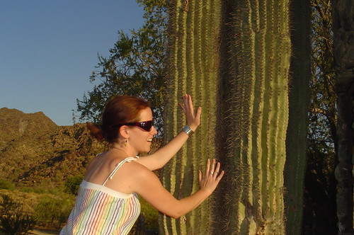 love the cactus... touch the cactus...