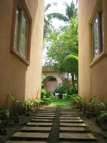 the quiet pathway