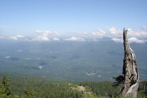 looking down from Mt. Pilchuk