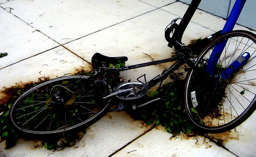 Bike needs a clean and service