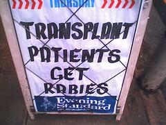 Transplant Patients get Rabies