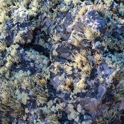 Coastal-Geology-square