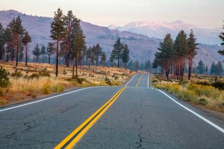 Drivers-View-at-Dawn
