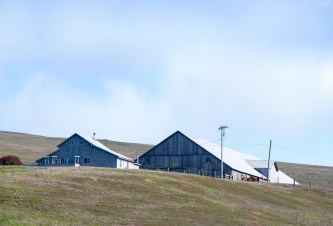 Protected Land, Point Reyes