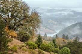 Rain-on-a-Foggy-Morning