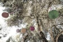 Lanterns Swinging