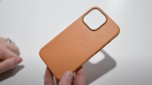 Apple's leather case