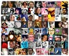 my flickr contacts