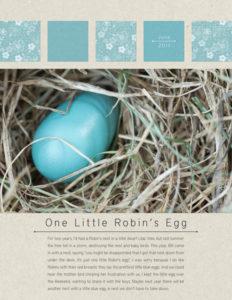 2011-07-16_Robin's Egg