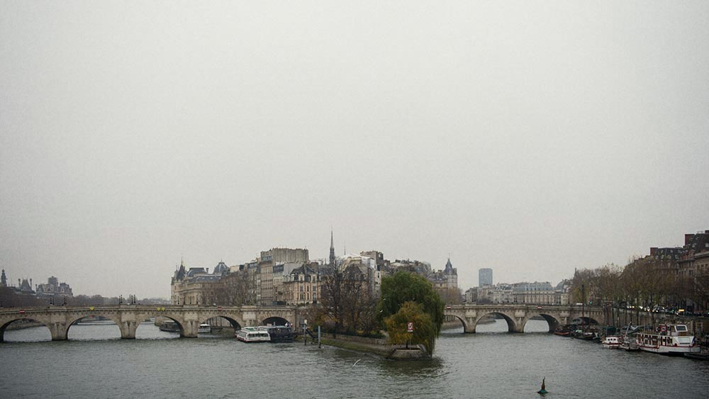 paris, winter,pont neuf