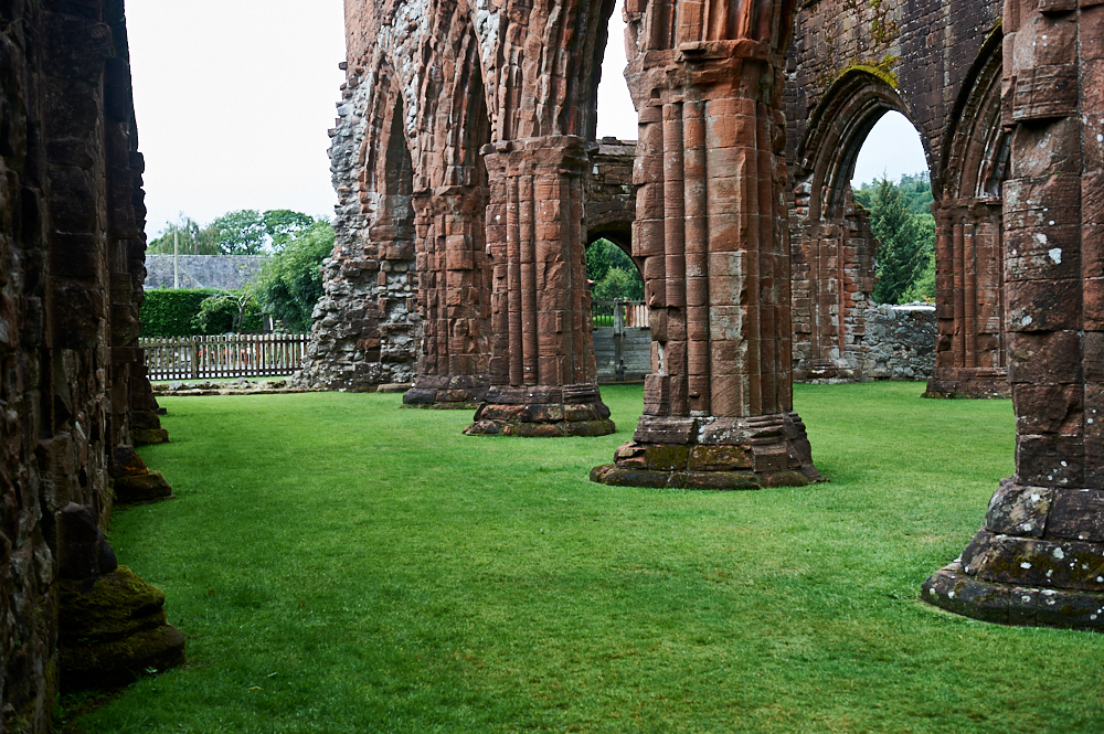 sweetheart abbey, scotland, uk, ruins, dumfries, galloway, national trust of scotland