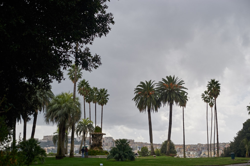 Palace of Capodimonte, napoli, naples, italy, photos an dthe city, city, museum, people, old, beauty, travel,