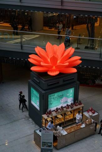 That's a big flower