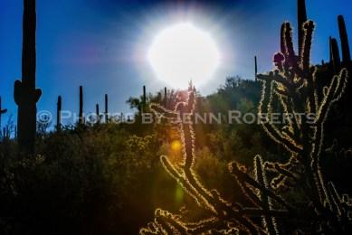 Arizona Sunset - Image 3