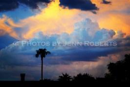 Arizona Sunset - Image 7