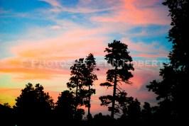Arizona Sunset - Image 8