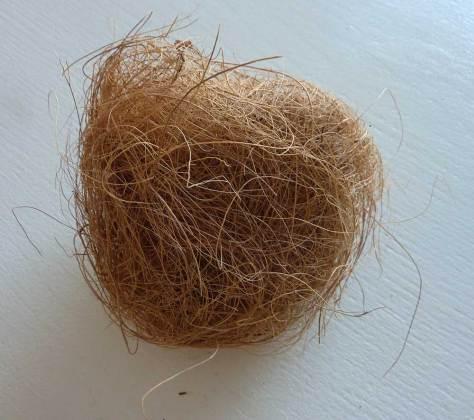 Fibre coco pour nid d'oiseaux exotiques