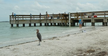 The fishing pier on the Sanibel lighthouse beach