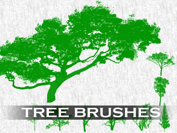 tree-brush