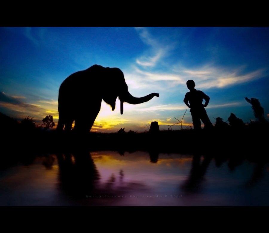 elephant_boy_by_perigunawan