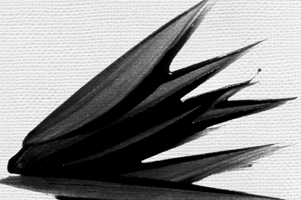 10 High Res Paper Textures - Photoshop Tutorials