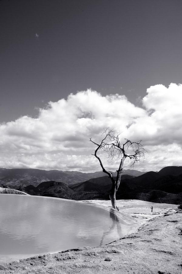 mono-landscape3