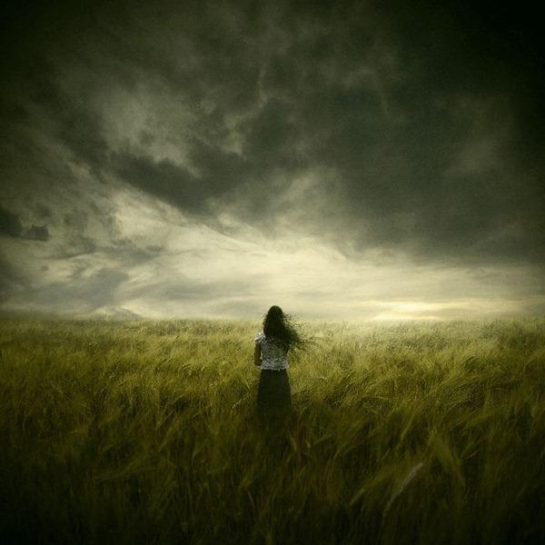 The Premonition[4]