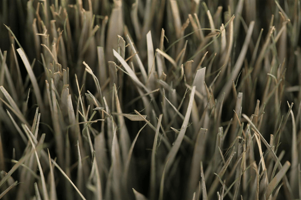 Dried Grass Textures - Photoshop Tutorials