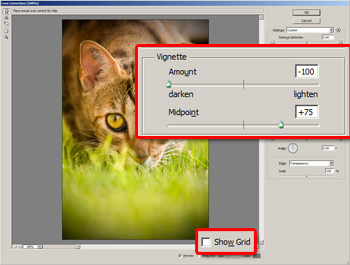 Adding a vignette with the Lens Correction filter in Adobe Photoshop CS2.